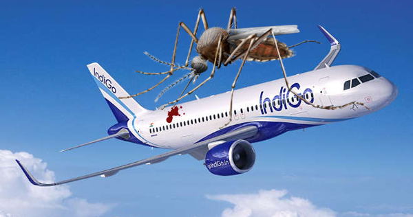 Doctor Removed From IndiGo Flight