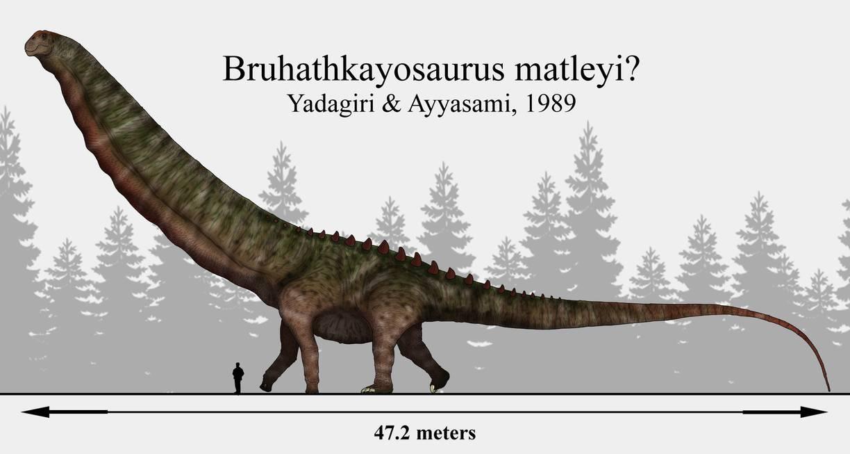 विश्व का सबसे बड़ा डाइनोसॉर ,वृहदकायासोरस (Bruhathkayosaurus), कभी भारत में विचरण करता था।